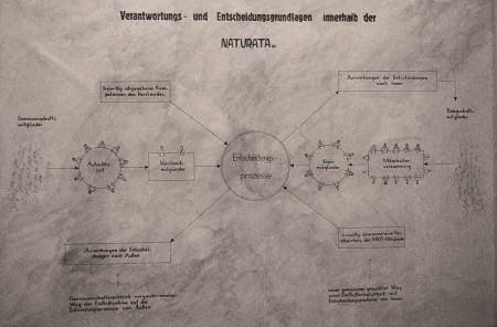 NATURATA Assoziative Genossenschaft - Entscheidungsstrukturen